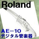 Roland ローランド / Aerophone AE-10 エアロフォン 《予約注文》【送料無料】【ウインドパル】