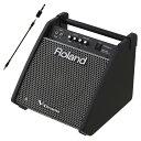 Roland 電子ドラム用モニタースピーカー PM-100 ステレオミニプラグケーブルセット【YRK】