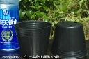 ビニールポット 通気性よくネット不要の標準 3.5号(10.5cm)角4個穴 5個【植木鉢】