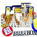 超おなまえBOX ◆【送料無料】 おなまえBOX完全版 ひらがな・漢字・ローマ字 フルセット アイロン不要油性スタンプ台2…