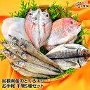 のどぐろ入り!近海魚 国産干物 詰合せ セットのどぐろ ( ノドグロ )・祝い鯛 ( れんこ鯛 )・白いか・カマス・あじセット5種でお届けします。国産 干物 セ...