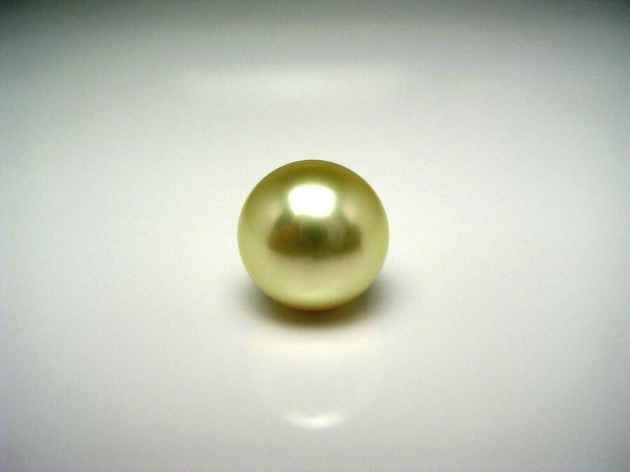 【送料無料】白蝶真珠 タイ留め 10.3mm ライトゴールド(ナチュラル) K18 イエローゴールド針 53353 イソワパール 真珠の故郷・伊勢志摩で80余年の歴史  真珠専門店がお薦めする白蝶真珠タイ留め