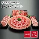 都城産豚 高城の里 わくわく3.6kg セット 豚肉 詰め合