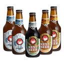 茨城県 木内酒造 ネストビール 飲み比べセット 5本セット ギフト 父親 誕生日 プレゼント