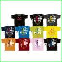 《レターパック可》《在庫処分》《数量限定》2016年3月発売 MIZUNO ユニセックス Tシャツ 62JA6Z52 ミズノ ウェア