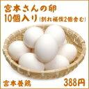 千葉県館山市産宮本さんの卵10個入り(割れ補償2個含む)