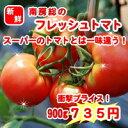 【産地直送】南房総市産フレッシュトマト900g(3個?6個入り)