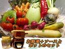 バーニャカウダ 【ソースとポットセット】シェフオススメ季節野菜(4人前)付き 【10P03Dec16】【RCP】