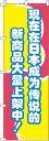 楽天のぼりキング今、日本国内で話題の新商品がぞくぞく入荷中!_赤 のぼり旗 0700005IN 60cm×180cm
