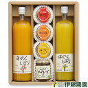 伊藤農園のバラエティギフトセット v-063 有田みかん・国産(和歌山産柑橘)・無添加・ス