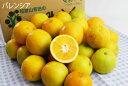【訳あり】バレンシアオレンジ 5kg お徳用 [ノーワックス・ノーブラッシング・防腐剤不使用・産地直