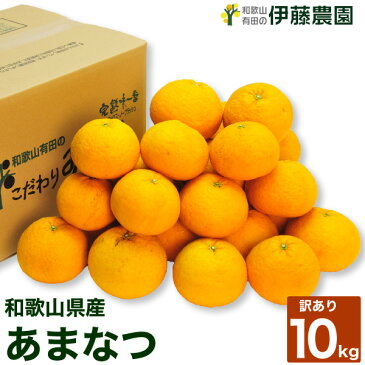 【訳あり】お徳用 あまなつ10kg 甘夏 春 柑橘類  [ノーワックス・ノーブラッシング・防腐剤不使用]