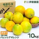 送料無料  オレンジ みかん 【訳あり】バレンシアオレンジ 10kg お徳用 [ノーワッ