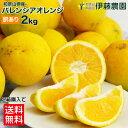 【今だけ990円】訳あり バレンシアオレンジ オレンジ みかん 国産 2kg 2箱〜送料無