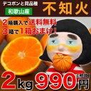 デコポン 同品種 不知火 訳あり 送料無料 2kg 2箱 購...