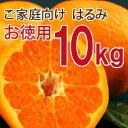 【訳あり】お徳用 はるみ10kg [ノーワックス・ノーブラッ...