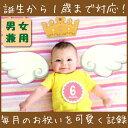 【メール便OK】【男女兼用】誕生〜1歳まで毎月の写真を素敵に記録しよう♪ピックス&プロップス 赤ちゃん用 ホールマーク pics 'n' props バースデー 成長 お誕生日