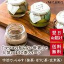 あす楽 宇治ティラミス(抹茶・ほうじ茶・玄米茶) 6個入 箱...