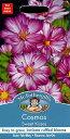 【輸入種子】Mr.Fothergill's SeedsCosmos Sweet Kissesコスモス・スイート・キッスイズミスター・フォザーギルズシード