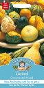 【輸入種子】Mr.Fothergill's SeedsGourd Ornamental Mixedゴード(おもちゃ南瓜)オーナメンタル・ミックスミスター・フォザーギルズ..