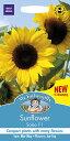 【輸入種子】Mr.Fothergill's SeedsSunflower Soleo F1サンフラワー(ひまわり)・ソレオ・F1ジョンソンズシード