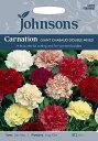 【輸入種子】Johnsons SeedsCarnation GIANT CHAUBAUD DOUBLE MIXEDカーネーション・ジャイアント・シャボー・ダブル・ミックスジョンソンズシード