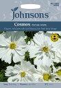【輸入種子】Johnsons SeedsCosmos Psyche Whiteコスモス・ピシェ(サイケ)・ホワイトジョンソンズシード