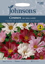 【輸入種子】Johnsons SeedsCosmos SEA SHELLS MIXEDコスモス シーシェルミックスジョンソンズシード