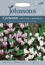 【輸入種子】Johnsons SeedsCyclamen hederifoliumシクラメン・ヘデリフォリウム=ネアポリタナムジョンソンズシード