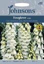 【輸入種子】Johnsons SeedsDigitalis Albaジギタリス(フォックスグローブ)・アルバジョンソンズシード