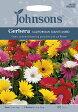 【輸入種子】Johnsons SeedsGerbera CALFORNIAN GIANTS MIXEDガーベラ カリフォルニアン ジャイアンツ ミックスジョンソンズシード