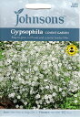 【輸入種子】Johnsons SeedsGypsophila Covent Gardenジプソフィラ(かすみ草)・コベント・ガーデンジョンソンズシード