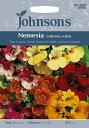 【輸入種子】Johnsons SeedsNemesia Carnival Mixedネメシア・カーニバル・ミックスジョンソンズシード
