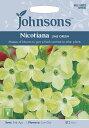 【輸入種子】Johnsons SeedsNicotiana Lime Greenニコチアナ(ハナタバコ)・ライム・グリーンジョンソンズシード
