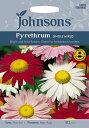【輸入種子】Johnsons SeedsPyrethrum ...