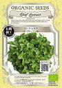 【有機種子】リーフレタス(オークリーフ/緑)グリーンフィールドプロジェクトのタネ