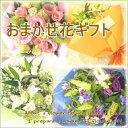 ≪送料無料!≫おまかせ花ギフト☆5,250円コース当店に花材おまかせだからできる鮮度とお値段。...