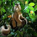 """ナキガオオマキザル KOSEN(ケーセン社) 35cm """"Toto"""" Weeper Capuchin Monkey/ぬいぐるみ"""