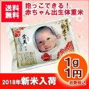 【新米入荷】【平成30年産】【赤ちゃん米】【送料無料】【出産内祝い】抱っこできる