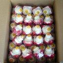 ミニ鏡餅 4ケース(200個入り)(レビュー書き込みで次回あめプレゼント)