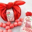 【kyo-rec】【楽ギフ_包装】母の日特別ギフト 私の気持ちカーネーションキャンディーセット【送料