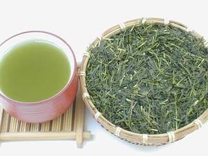 JAS認定・有機栽培茶【東光一号】(100g) 「メール便可!」 お茶・日本茶・HALAL(ハラル)認証
