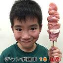 国産鶏肉 焼き鳥 鶏串 ジャンボ 冷凍 1本 100g (焼...