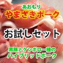 【送料無料】【焼肉・お試しセット】青森 やまざきポーク お試しセット 3000 冷凍 焼肉セット【バーベキューセット】 02P03Dec16
