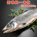 北海道産 新巻鮭一本物【約4キロ】送料無料・化粧箱入 送料無料