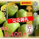 【送料無料】 北海道産「千両梨」 9〜10kg 25玉入 C...