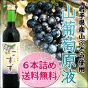 岩手・八幡平山葡萄原液(こすず)500ml×6本セット 山ぶどうストレート果汁