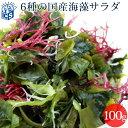 国産 乾燥 海藻サラダ100g わかめ/茎わかめ/昆布/ふのり/赤とさか/白おご[メール便送料無料 MSM]