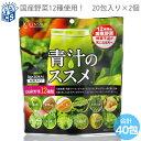 国産青汁 12種類の国産野菜 青汁のススメ3g×40包入り[メール便送料無料 MSM]