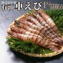 【送料無料】車えび<海老/蝦/エビ/天ぷ...